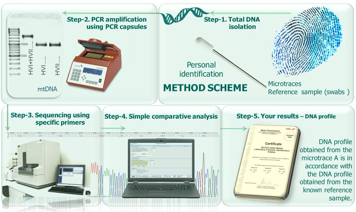 Quy trình xét nghiệm ADN cha - con