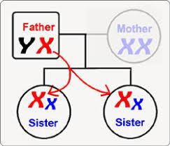 Xét nghiệm ADN bé gái
