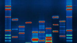 Chỉnh sửa ADN bên trong cơ thể người lần đầu tiên được áp dụng
