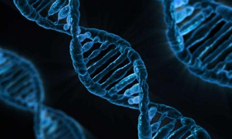 Xét nghiệm ADN phát hiện sớm bệnh di truyền