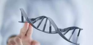 Phân biệt xét nghiệm ADN pháp lý và dân sự